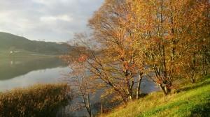 Høst, Høststemning, Gylne blader, Stokkalandsvannet, Sykkelstien
